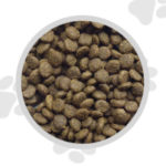Super Premium Salmon and Potato Dog Food - Small Bite