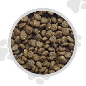 Super Premium Salmon and Potato Dog Food - Small Bite