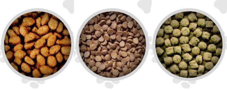 Little Chompers Dog Food